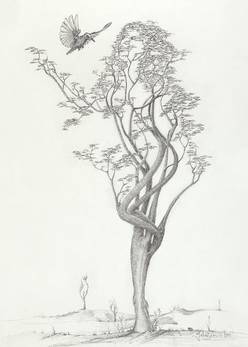 Tree Dancer Greeting Card featuring the drawing Tree Dancer In Flight by Mark Johnson