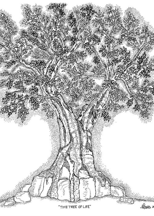 Christian Greeting Card featuring the drawing Tree Of Life 1 by Glenn McCarthy Art and Photography