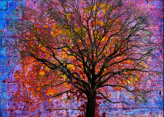 Tree Greeting Card featuring the photograph Tree Of Life by David Clanton