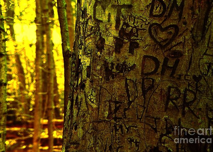 Initials Greeting Card featuring the photograph Tree Of Love by Don Kenworthy