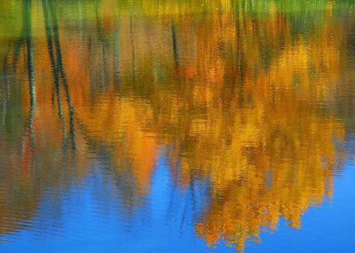 Fall Color Greeting Card featuring the photograph Tree Reflection 'painting' by Alan Lenk