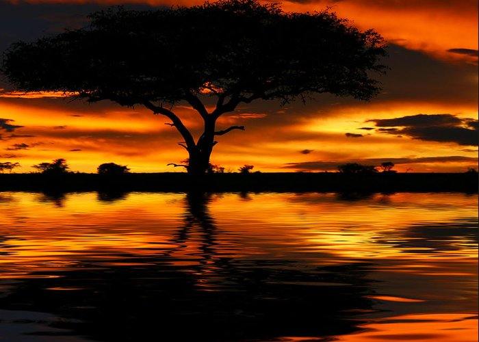 Africa Greeting Card featuring the photograph Tree Silhouette And Dramatic Sunset by Anna Om