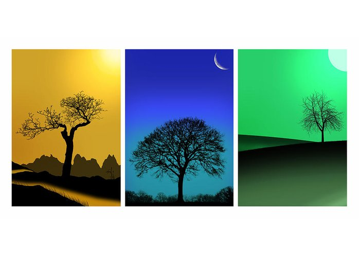 Tree Triptych Greeting Card featuring the photograph Tree Triptych by Mark Rogan