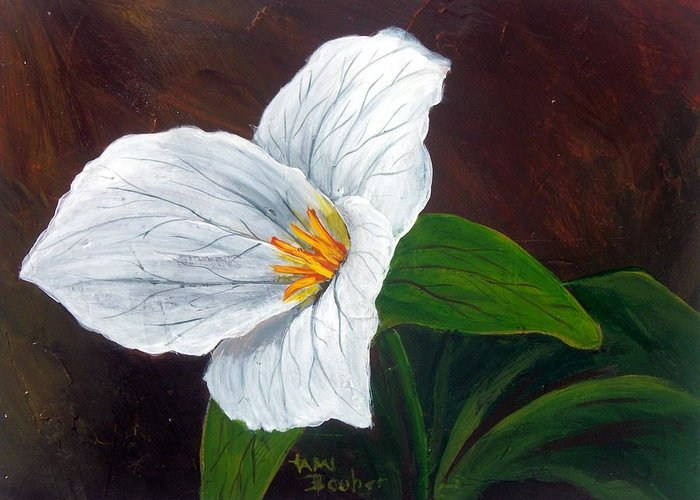 Nature Greeting Card featuring the painting Trillium by Tami Booher