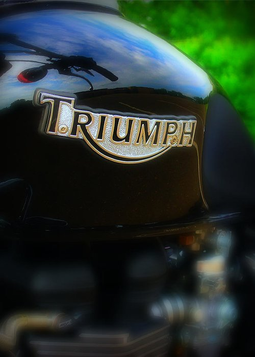 Triumph Greeting Card featuring the photograph Triumph by Perry Webster