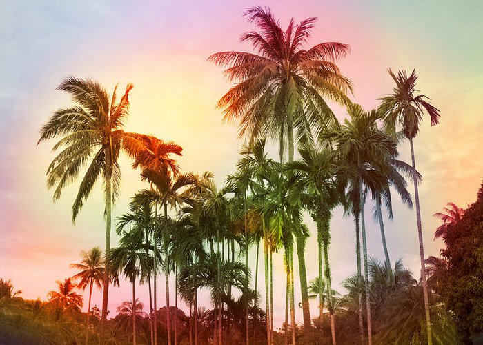 Tropical Greeting Card featuring the photograph Tropical 11 by Mark Ashkenazi