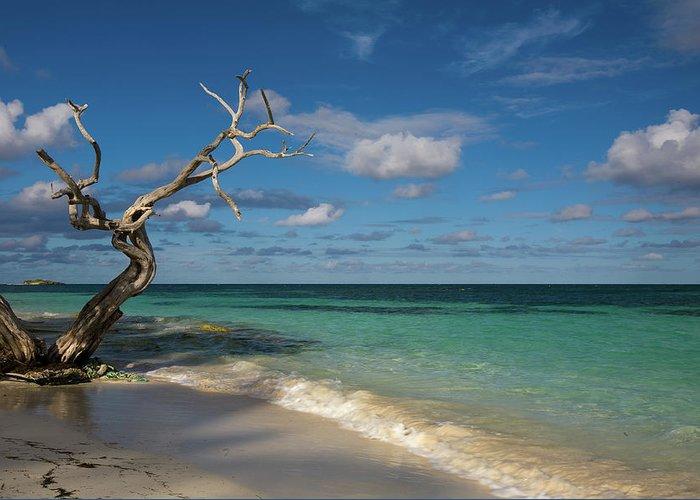 Beach Greeting Card featuring the photograph Tropical Beach by Diego Pagani