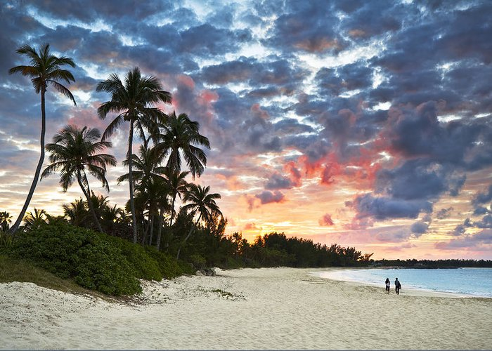 Beach Greeting Card featuring the photograph Tropical Caribbean White Sand Beach Paradise At Sunset by Dave Allen