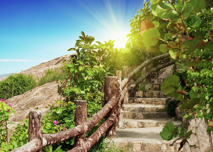 Stairs Greeting Card featuring the photograph Tropical Garden by MotHaiBaPhoto Prints