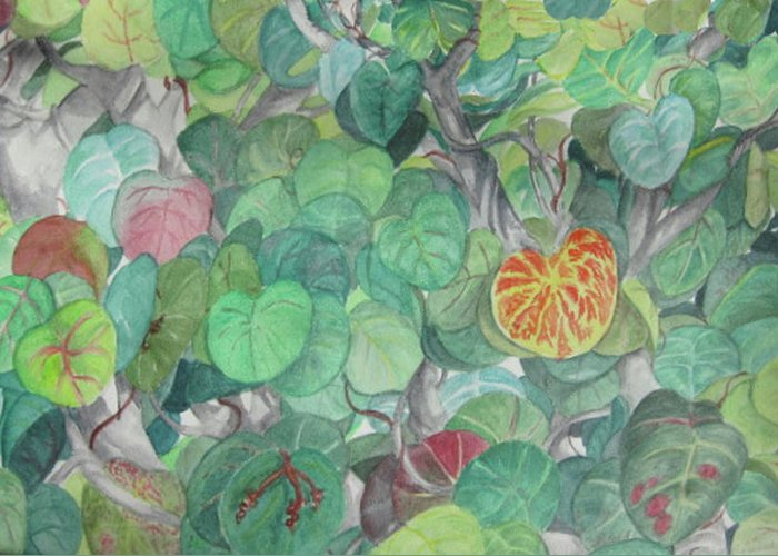 Plants Greeting Card featuring the painting Tropical Leaves by Judy Riggenbach