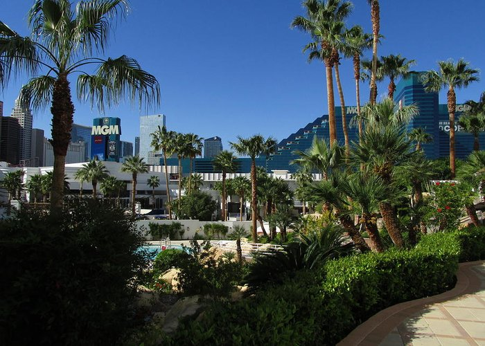 Las Vegas Greeting Card featuring the photograph Tropicana And The M G M Grand, Las Vegas by David Burns