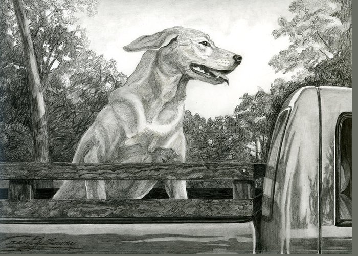 Dog Greeting Card featuring the painting Truck Queen Study by Craig Gallaway