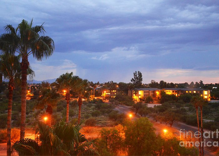 Palm Tree Greeting Card featuring the photograph Tucson Skies by Korynn Neil