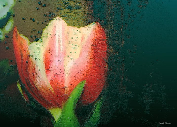 Tulip Greeting Card featuring the photograph Tulip Of Love by Linda Sannuti