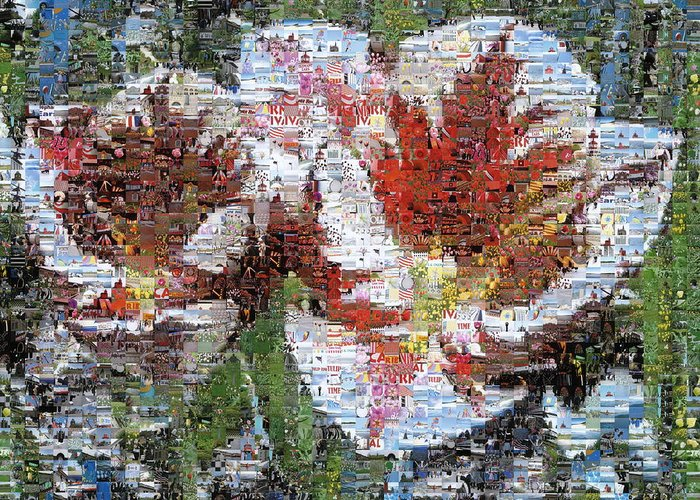Lighthouse Greeting Card featuring the photograph Tulips In Springtime Photomosaic by Michelle Calkins