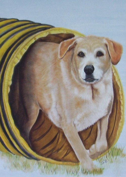 Pet Portrait Greeting Card featuring the painting Tunnel Dog by Janice M Booth