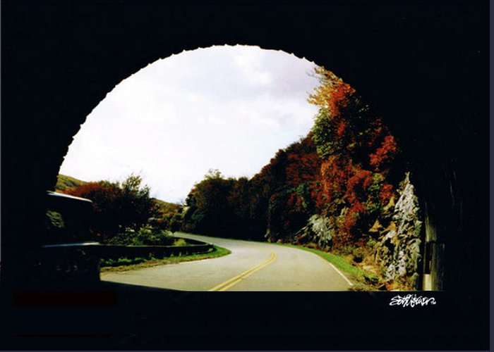 Tunnel Vision Greeting Card featuring the photograph Tunnel Vision by Seth Weaver
