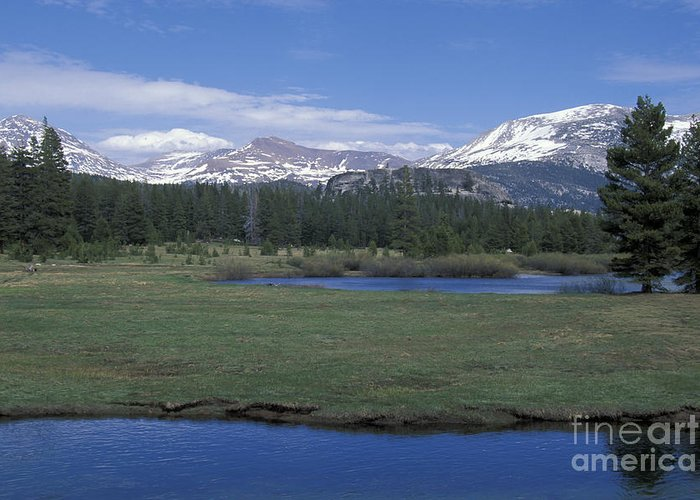 California Greeting Card featuring the photograph Tuolomne Meadows In June by Stan and Anne Foster