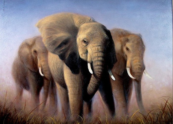 Realism Greeting Card featuring the painting Tusks by Donelli DiMaria