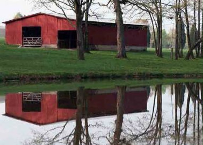 Barn Greeting Card featuring the photograph Twice As Nice by Linda A Waterhouse