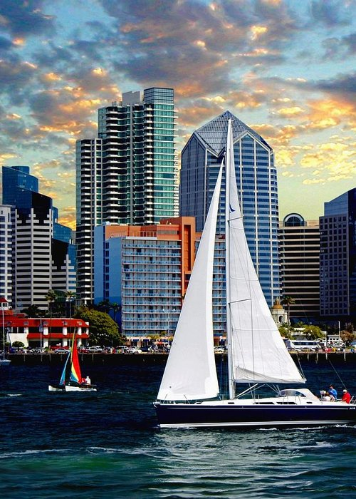 Sailing In San Diego Harbor Greeting Cards