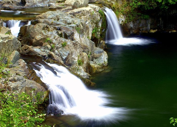 Waterfalls Greeting Card featuring the photograph Twin Falls 3 by Marty Koch