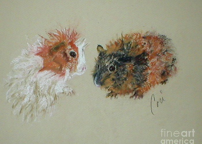 Guineas Greeting Card featuring the drawing Two Guineas by Cori Solomon
