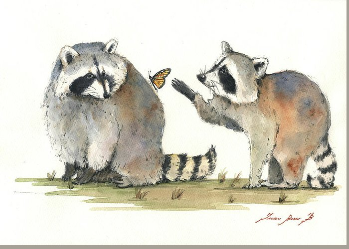 Raccoon Greeting Cards