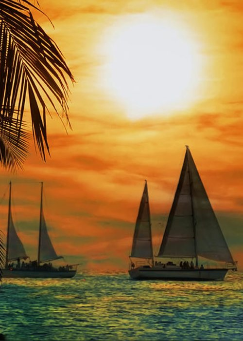 Sail Greeting Card featuring the photograph Two Ships Passing In The Night by Bill Cannon