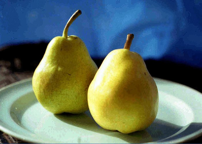 Pear Greeting Card featuring the photograph Two's Company by Miriam Kalb