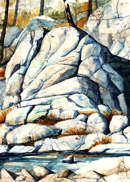 Council Rock Greeting Card featuring the painting Tyler Park by Patricia Allingham Carlson
