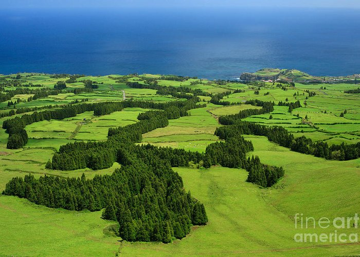 Landscape Greeting Card featuring the photograph Typical Azores Islands Landscape by Gaspar Avila