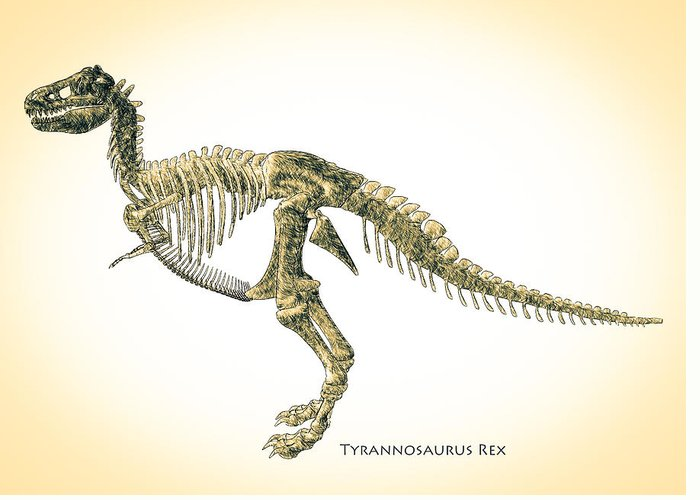 Theropod Greeting Cards