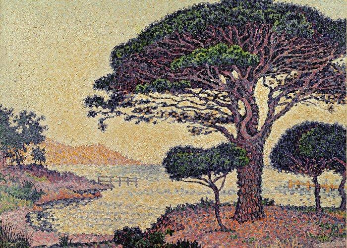 Umbrella Pines At Caroubiers Greeting Card featuring the painting Umbrella Pines At Caroubiers by Paul Signac