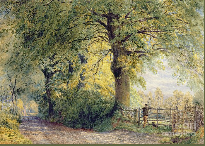 Under The Beeches (oil On Canvas) By John Steeple (1823-1887) Greeting Card featuring the painting Under The Beeches by John Steeple