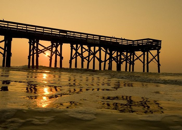 Landscape Greeting Card featuring the photograph Under The Boardwalk 3 by Tom Rickborn