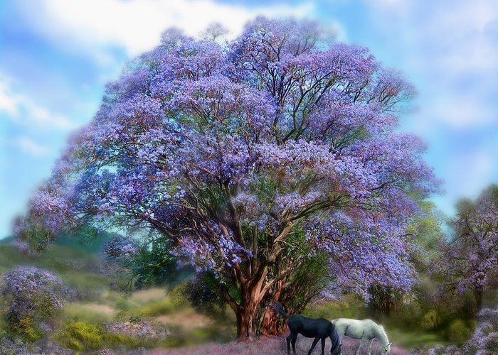 Jacaranda Tree Greeting Card featuring the mixed media Under The Jacaranda by Carol Cavalaris