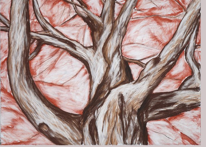 Tree Greeting Card featuring the drawing Undulating Tree by John Terwilliger
