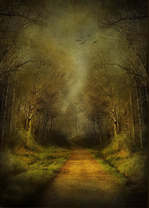 Fantasy Greeting Card featuring the digital art Unknown Footpath by Svetlana Sewell