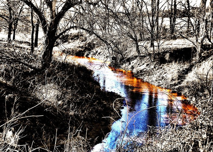Creek Greeting Card featuring the photograph Up On Cripple Creek by Karen Scovill