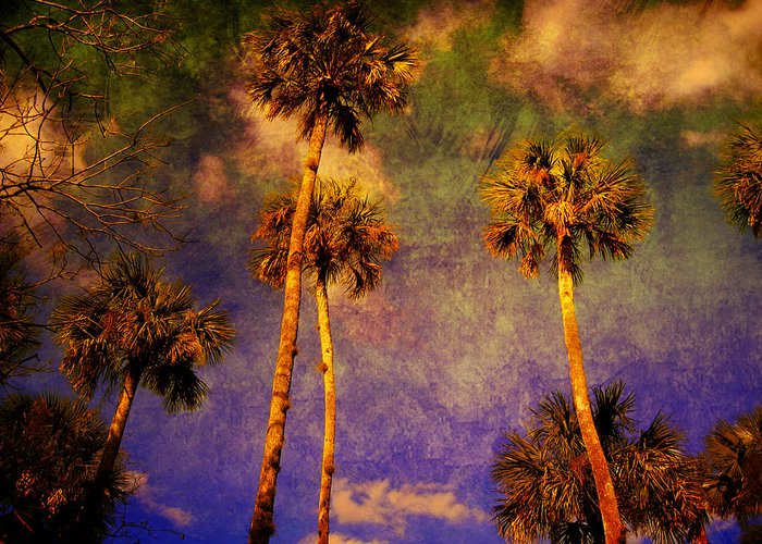 Palm Tree Greeting Card featuring the photograph Up Up To The Sky by Susanne Van Hulst