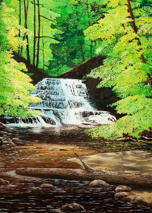Water Greeting Card featuring the painting Upper Falls At Salt Springs by Mark Regni