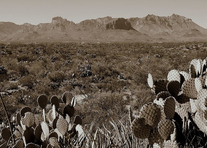 Chisos Mountaints Greeting Card featuring the photograph Uprising by Karen Musick