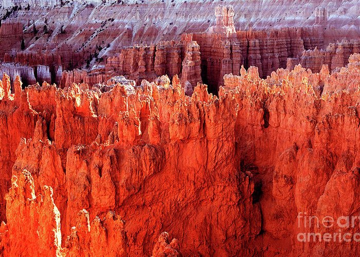 Bryce Canyon National Park Greeting Card featuring the photograph Utah - Bryce Canyon National Park - Queens Garden 7 by Terry Elniski