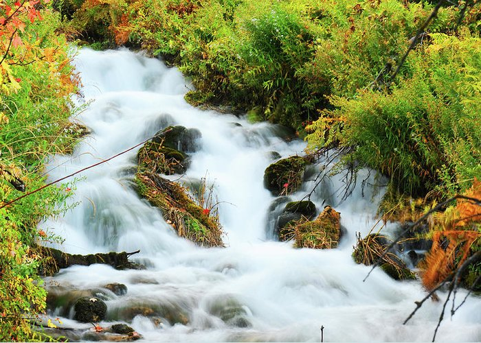 Waterfall Greeting Card featuring the photograph Utah Cascade by Dennis Hammer