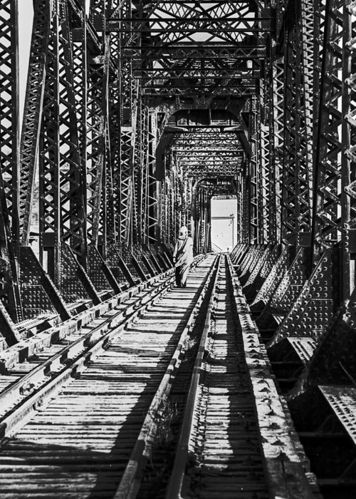 Bridge Greeting Card featuring the photograph Vagrant On Bridge by Don Wolf