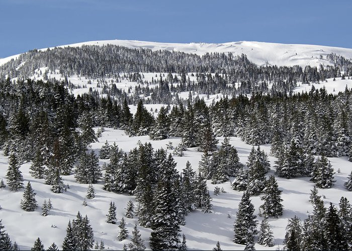 Vail Greeting Card featuring the photograph Vail Pass Colorado Winter by Brendan Reals