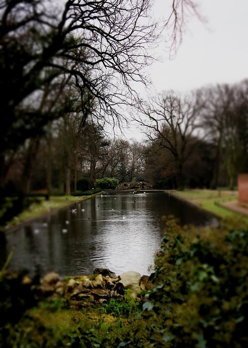 Park Greeting Card featuring the photograph Valentines Park by Perggals - Stacey Turner
