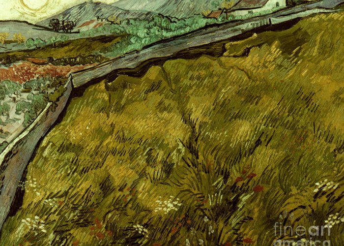 1890 Greeting Card featuring the photograph Van Gogh: Field, 1890 by Granger