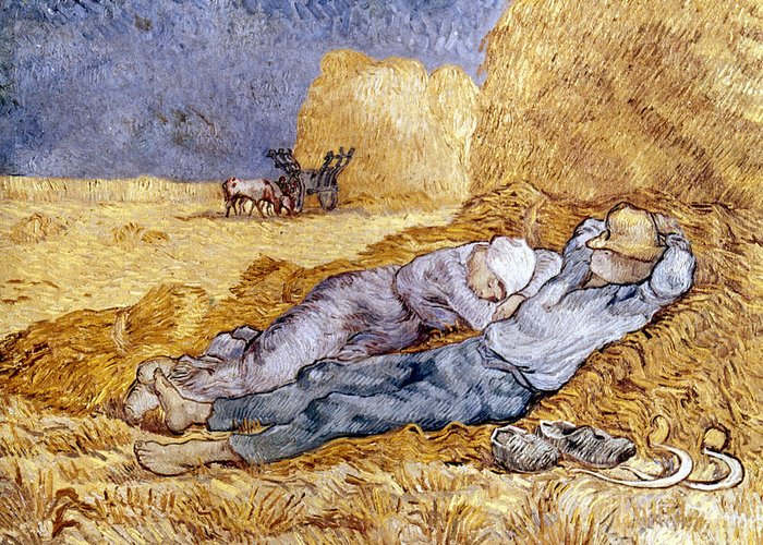 1890 Greeting Card featuring the photograph Van Gogh: Noon Nap, 1889-90 by Granger